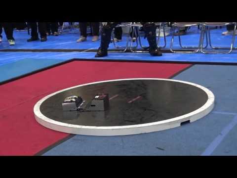 Sumo robótico japones